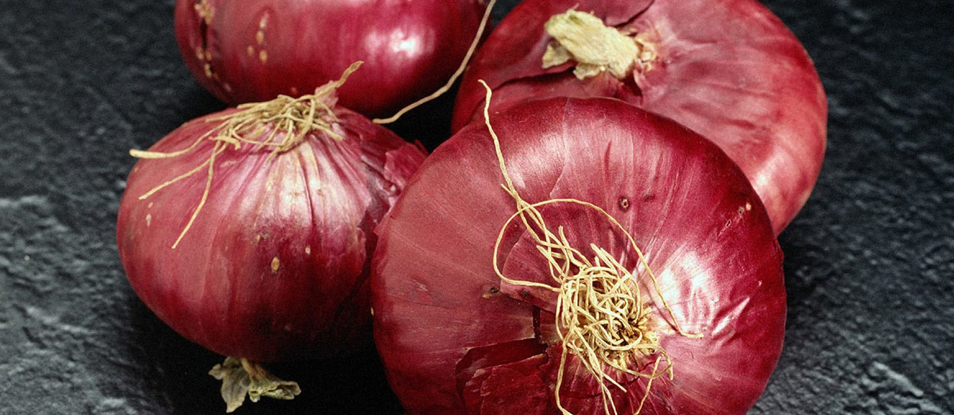 Dehydrated White Onion Products, Dehydrated Garlic Products, Dehydrated Red Onion Products, Dehydrated Pink Onion, Ganesh Foods, Mahuva Onion Suppliers, Ganesh Dehy Foods, Dried Onions