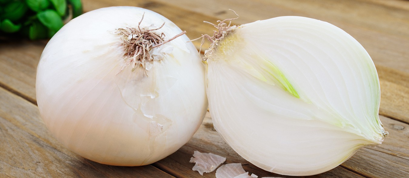 Mahuva Onion Suppliers, Dehydrated White Onion Products, Dehydrated Garlic Products, Dehydrated Red Onion Products, Dehydrated Pink Onion, Dried Onions